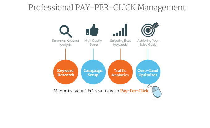 Professional Pay per Click Management